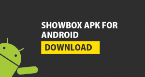how to use showbox with vpn